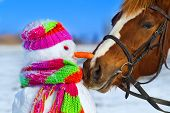 stock photo of horses eating  - Portrait of horse and snowman in winter landscape - JPG