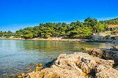 Beautiful Stone Beach In Camping Resort Kosirina, Island Od Murter, Croatia, Blue Bay On Croatian Ad poster