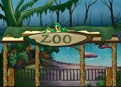 pic of jungle snake  - Illustration of a zoo and a river in a scary jungle - JPG