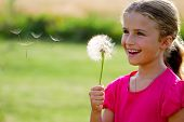 foto of dandelion  - Allergy season  - JPG