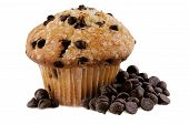 stock photo of chocolate muffin  - Chocolate chips muffin - JPG