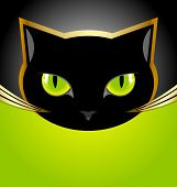stock photo of wildcat  - Golden and black cat head on black and green background - JPG