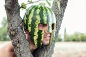 image of melon  - Photo of the young soldier with a water - JPG