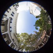 pic of degree  - 360 degree fisheye view of small town business district - JPG