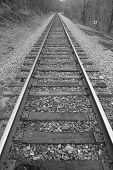 A Black and White Image of Railroad Tracks