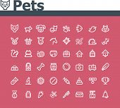 stock photo of glyphs  - Pets icon set - JPG