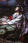 stock photo of gethsemane  - Stain glass window of Jesus praying in the Garden of Gethsemane - JPG