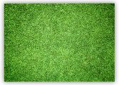 ������, ������: Greensward Football