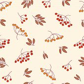 picture of rowan berry  - Seamless vector autumn pattern with red and orange berries and leaves - JPG