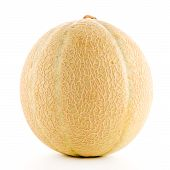 pic of muskmelon  - Juicy honeydew melon on a white background - JPG