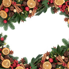 pic of greenery  - Christmas background border with cinnamon spice - JPG