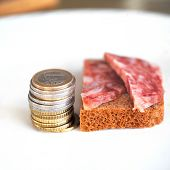 stock photo of pity  - Macro shot of euro coins  and bread with two pitiful slices of salami laid on a plate - JPG