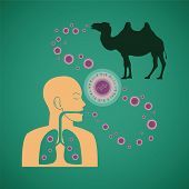 pic of respiratory disease  - Vector concept of man and animal respiratory pathogenic MERS virus - JPG