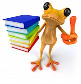stock photo of orange frog  - Fun frog - JPG