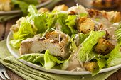 pic of chicken  - Healthy Grilled Chicken Caesar Salad with Cheese and Croutons - JPG
