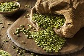 foto of green pea  - Raw Organic Green Split Peas in a Spoon - JPG