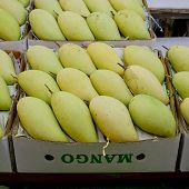 stock photo of mango  - Thai mangoes in market - JPG