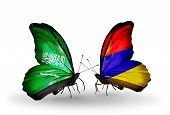 pic of armenia  - Two butterflies with flags on wings as symbol of relations Saudi Arabia and Armenia - JPG
