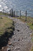 image of southwest  - Southwest Coast footpath at Baggy Point headland Croyde North Devon England a popular walk throughout the year - JPG