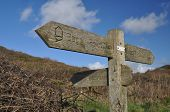 image of southwest  - Direction sign on the Southwest Coast footpath near Baggy Point headland Croyde North Devon England - JPG