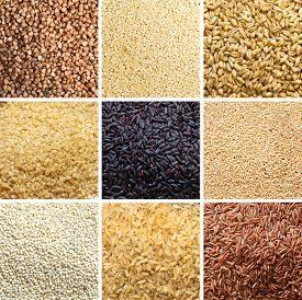 stock photo of millet  - Collage of 9 cereals - JPG