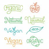 picture of food logo  - Vector labels and logos in trendy mono line style  - JPG