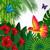 foto of colibri  - Tropical floral design background with bird - JPG