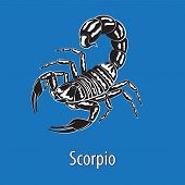 Sign Of The Zodiac Scorpio. Constellation Of The Scorpion Isolated Background. Vector Image Eps 10 poster