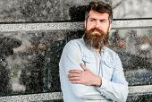 Guy Masculine Appearance With Long Beard. Barber Concept. Beard Grooming. Beard Care. Man Attractive poster