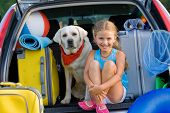 stock photo of dog clothes  - Summer holiday - JPG