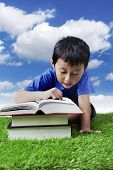 Boy Reading Books On The Meadow