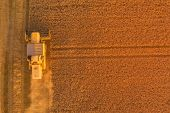 Birdseye Aerial Shot Of A Combine Harvester Harvesting A Wheat Field At Sunset In The Uk poster