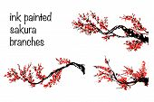Cherry Blossom Set. Hand Drawn Branches With Red Cherry Flowers Blooming.  Sakura Blossoming Twig Is poster