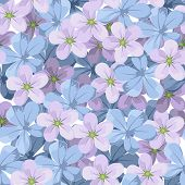 Seamless background with blue and purple flowers. Vector illustration.