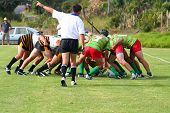 picture of umpire  - rugby melee - JPG