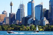 Sydney Harbour, Hyde Park and Sydney, Australia