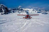 pic of denali national park  - Snow Plane Landing on Ruth Glacier in Denali National Park - JPG
