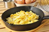 picture of scrambled eggs  - Fresh cooked scrambled eggs in a cast iron skillet with brown egg shells in the background - JPG