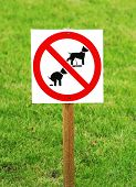 stock photo of pooping  - No dog pooping and pissing sign on the green grass - JPG
