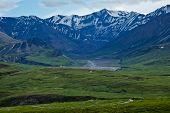 foto of denali national park  - A trail winds through Alaska - JPG