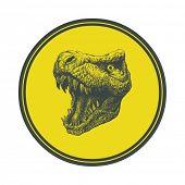 stock photo of tyrannosaurus  - Tyrannosaurus Dinosaur  - JPG