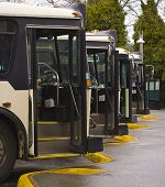 stock photo of motor coach  - Vertical Photo of Black and White Buses lined up - JPG