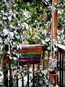 image of planters  - Winter snow on patio deck with hanging planters outdoors - JPG