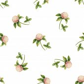 foto of clover  - Clover flowers watercolor vector seamless pattern - JPG