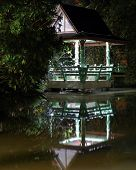 stock photo of vegetation  - lighted gazebo is reflected in the water the night of the lake on the background vegetation - JPG