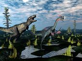 picture of tyrannosaurus  - Tyrannosaurus rex attacking gigantoraptor dinosaur among tempskya trees and nipa plants by day  - JPG