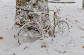 stock photo of bereavement  - White bike parked next to a tree in the snow - JPG
