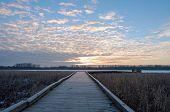 picture of wetland  - Boardwalk toward minnesota river across wetlands of minnesota valley wildlife refuge in bloomington - JPG