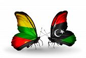 picture of libya  - Two butterflies with flags on wings as symbol of relations Lithuania and Libya - JPG