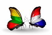 picture of holland flag  - Two butterflies with flags on wings as symbol of relations Lithuania and Holland - JPG
